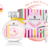 Essence Cute range of Fragrances